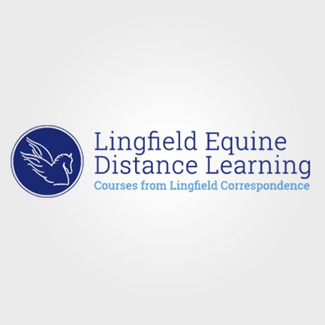 Lingfield Equine Distance Learning