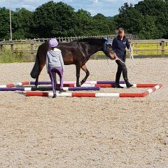 Doing groundwork with a visually impaired rider - Confident Equestrians