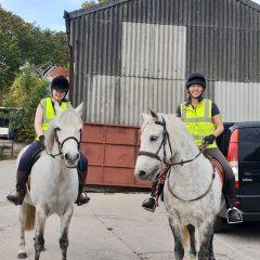 Confident-equestrians-1