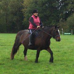 Confident-equestrians-2
